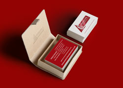 CSS Business cards